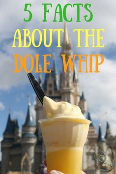 5 fascinating facts about the super popular Dole Whip treat at Walt Disney World. Disney World Food, Walt Disney World, Dole Pineapple Juice, Disney Desserts, Disney Dining Plan, Soft Serve, Vanilla Flavoring, Weight Watchers Meals, Fascinating Facts