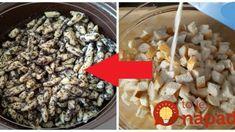 Mega chutné makové šúľance zo starších rožkov: Iné cesto už nerobím, toto nemá konkurenciu! Cereal, Food And Drink, Ale, Baking, Breakfast, Sweet, Recipes, Morning Coffee, Candy