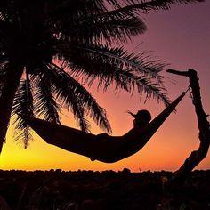 The life // post train hammock vibes via @jake_of_all_trades #jiujitsueveryday // #athlifestyle