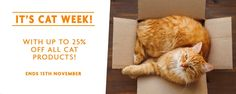 25% Off All Cat Products @ Petpost - Bargain Bro