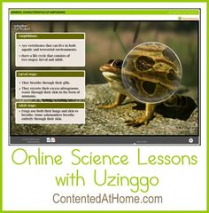 Online Science Lessons with Uzinggo | Contented at Home