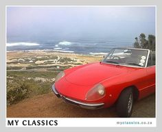 1974 ALFA ROMEO SPIDER classic car