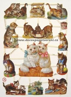 You will receive one sheet of beautiful lithographed paper scraps from Germany. Perfect for scrapbooking, decoupage or collage. Vintage Cat, Vintage Paper, Vintage Images, Album Vintage, Vintage Scrapbook, Kittens Cutest, Cats And Kittens, Collages, Printable Animals