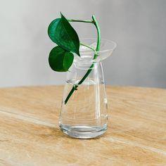 Kinto Aqua Culture Vase (Small, clear) by · Readings.com.au