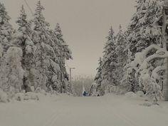 #snow and #winter at #kiilopää #lapland #finland Photo by Terhi Sirviö