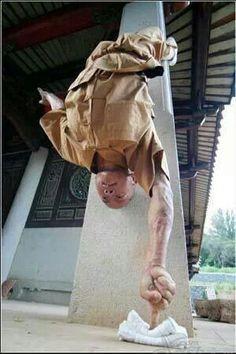 Shaolin Kung Fu - Yi Zhi Chan