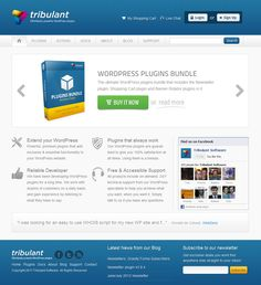 Powerful premium plugins that add exclusive & essential functionality to your WordPress website.  Our WordPress plugins are guaranteed to give you 100% satisfaction at all times. Using them is a breeze.  Use coupon code 10OFFP to get 10% off your purchase.  http://tribulant.com