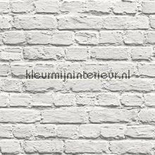 Witte bakstenen muur behang 102539 Dutch Wallcoverings