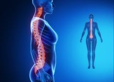Finn ut hvordan du kan tøye ryggraden på bare 2 minutter - Veien til Helse What Is Psoriasis, Psoriasis Cream, Dor Cervical, Auswirkungen Von Stress, Spine Alignment, Spinal Column, Psoriasis Remedies, Muscle Spasms, Body Organs