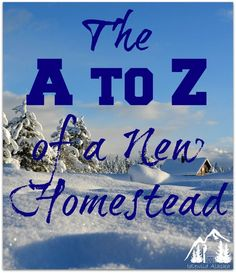 The A to Z of a New Homestead - IdlewildAlaska