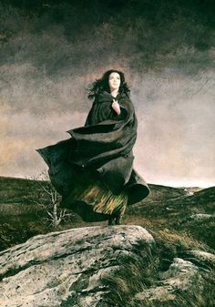 Robert McGinnis, 'Wuthering Heights' - I only pinned this because of the song by Kate Bush. Robert Mcginnis, Gothic Horror, Arte Horror, Horror Art, Gothic Books, Gothic Art, Emily Brontë, Images Esthétiques, Wuthering Heights