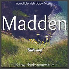 Find a name for your baby! boy girl names irish baby names, Unusual Baby Names, Unique Names, Cool Names, Pretty Names, Irish Girl Names, Boy Girl Names, Irish Girls, Baby Names And Meanings, Names With Meaning