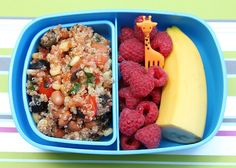 Healthy Lunchbox Ideas!