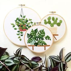These plant embroidery hangings would bring the garden inside. These clever works are by Sarah Benning.