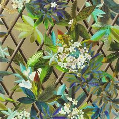 canopy - or wallpaper | Christian Lacroix