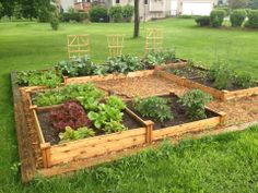 Leo Kowal @Botanical Interests 90% of this garden is from your organic seeds!! Lettuce, Cilantro, Radishes, Beets, Onions, Cauliflower, Broccoli, Squash, Jalapenos, Green Peppers, and a few tomato varieties. Looking good!! Thanks Botanical Interests Seed Packets!