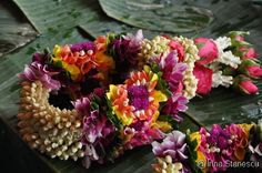 thai flower market | Around the world with Irina: The flower market, Bangkok, Thailand