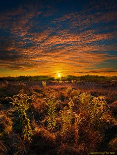 ~~Destination Unknown ~ Autumn twilight, dramatic cloudscape and field, Wisconsin, Horizons by Phil-Koch~~