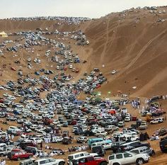 Safari gathering in Oman! This is really a huge group :D Share it with someone would love to join them ;)