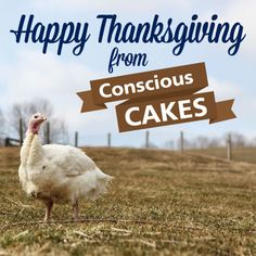 Happy Thanksgiving from all of us at Conscious Cakes! #vegan #glutenfree