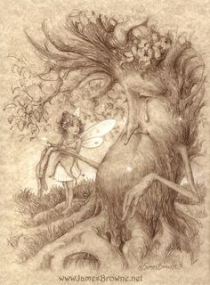 On The Mend Fairy Tree Greeting Card by James Browne