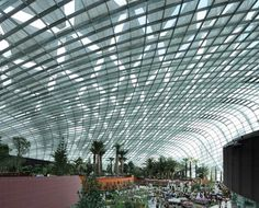 Gardens by the Bay by Grant Associates and Wilkinson Eyre   wordlessTech