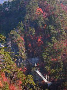 Suspension bridge #Kazumi Ishikawa #Tochigi #japan
