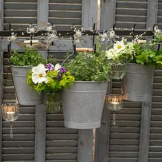 Garden fence made from grey painted shutters  Add hooks to your shutter fence and use them to display pretty potted plants – buckets work well, as their handles make them easy to hang.