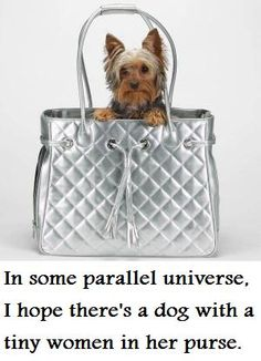 """In some Parallel Universe, I hope there's a dog with a tiny woman in her purse"""