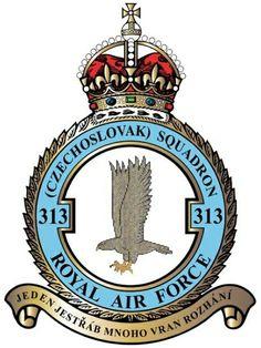 313_EX Aircraft Design, Royal Air Force, Vintage Design, Rare Photos, Coat Of Arms, Badge, Pilot, Tumblr, Painting