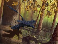 Flight of the Microraptor  Image by Emily Willoughby