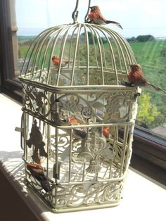Shabby Chic Bird Cage Decor Vintage Style Decorated With Robins