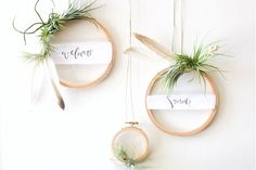 DIY Ideas: DIY Tutorial Summer Air Plant Wreath for Weddings and Cocktail Parties by A Fabulous Fete for Oh So Beautiful Paper - Blumen & Tischdekoration Ideen - Christmas Crafts, Christmas Decorations, Christmas Ring, Christmas Greenery, Christmas Sweets, Merry Christmas, Diy Wreath, Wreath Ideas, Plant Hanger