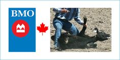 http://www.thepetitionsite.com/pt-pt/459/475/255/ask-bank-of-montreal-bmo-to-stop-sponsoring-cruel-calgary-stampede/