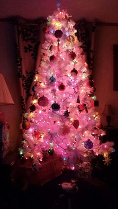 22 Best Christmas Trees Images In 2015 Christmas Cool