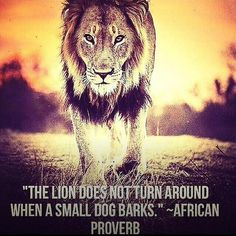 """Do not care what other people think. Remember, """"The lion does not turn around when a small dog barks."""" #quote"""