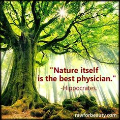 Nature itself is the best physician - Hippocrates -