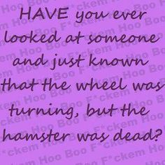 Have you ever looked at someone & just known that the wheel was turning, but the hamster was dead?