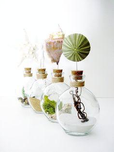 Love these! - Seaside Sea Urchin Glass Bottle Terrarium by DoodleBirdie on Etsy, $25.00