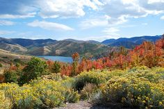 Emigration Canyon (East Canyon Reservoir), Utah. Fall 2011