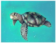 Seagreen Seaturtle by LemonSherman on DeviantArt - Sea Turtle Art, Baby Sea Turtles, Cute Turtles, Turtle Love, Sweet Turtles, Sea Turtle Pictures, Turtle Tattoo Designs, Ocean Tattoos, Sea Turtle Tattoos