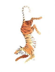 Tiger by Ena Kim #illustration                                                                                                                                                                                 Más