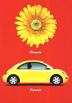LOVE buttercup AND her flower power sticker. Best. Car. Ever. :)