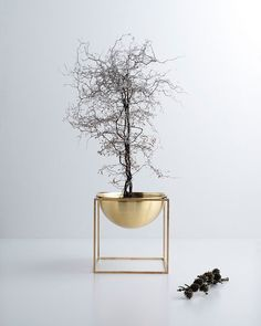 by lassen Launches its Kubus and Line series in Brass - NordicDesign