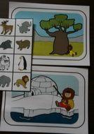 Le Grand Nord : Animaux d'Articque ou animaux d'Afrique. Jeu de tri et de classement. Tri, Arctic Animals, Folder Games, Busy Bags, Teaching Kids, Montessori, Kindergarten, Crafts For Kids, Preschool