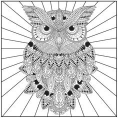 Color with Music Owls of the