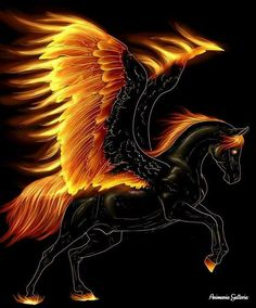 Repin if you want this pegasus.