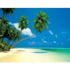 (16x20) Maldives Morning (Tropical Beach) Art Print Poster (Kitchen)  http://www.amazon.com/dp/B000H82Q84/?tag=pinterest123-20