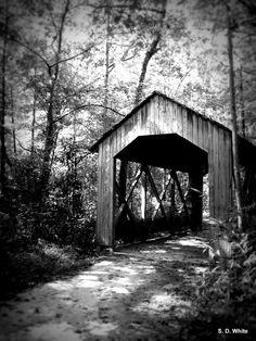 Fayetteville, NC: Covered Walk Bridge - Fayetteville, NC - Scott's Photos