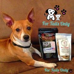 Etta Says and Smart Cookee's. Two Pawsome treats for your Fur Babies.  Have you ordered yours yet?  Your Fur Baby is waiting, treat them today at www.fortailsonly.com/#BobbieLavner and please use FH052 at checkout.